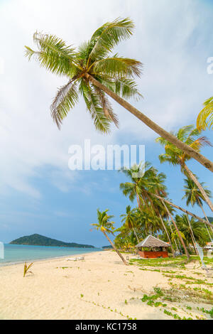 Palm trees on beautiful tropical beach on Koh Chang island in Thailand - Stock Photo