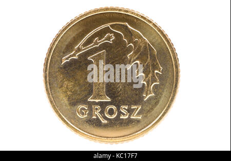 Closeup of 1 polish grosz coin isolated on white background with clipping path - Stock Photo