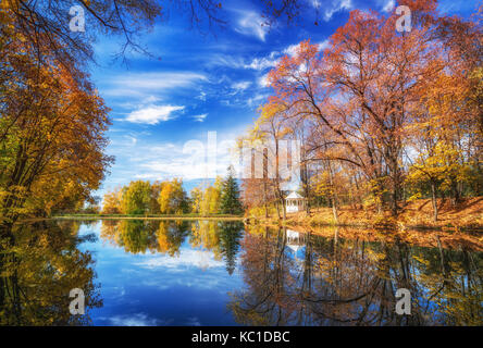 Sunny autumn in the park over lake