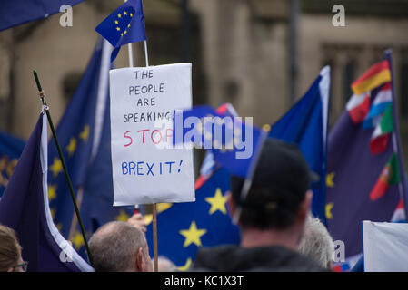 Manchester, UK. 1st October, 2017. A placard at the '#StopBrexit' demonstration in Manchester, United Kingdom, Sunday, - Stock Photo