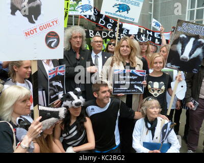 Brian May protests against badger culling outside DEFRA headquarters 1st June 2013. - Stock Photo