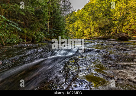 Summer view of a small river in the mountain. Close. Long exposure - Stock Photo