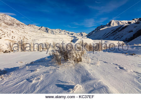 Mysterious winter landscape majestic mountains in winter. Magical winter snow covered tree - Stock Photo