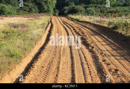 Sandy track crossing heathland, Sutton, Suffolk, England, UK - Stock Photo