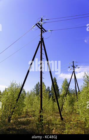 The pillars of the high-voltage power line located in the taiga - Stock Photo