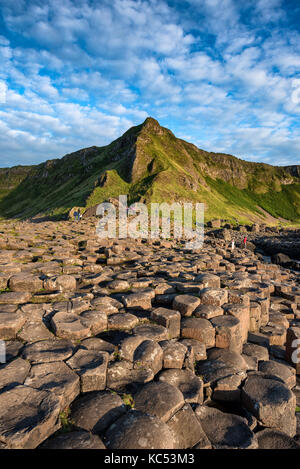 Basalt columns by the coast at sunset, Giant's Causeway, County Antrim, Northern Ireland, United Kingdom - Stock Photo