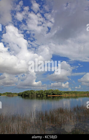 Cloud covered landscape in Everglades National Park, Florida - Stock Photo