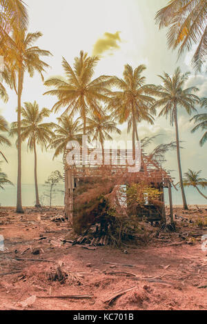 destroyed wooden house on coastline with palm trees and beach background - - Stock Photo