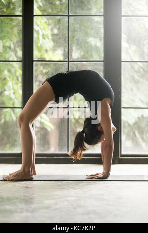 lady in yoga pose dhanurasana mr773b stock photo