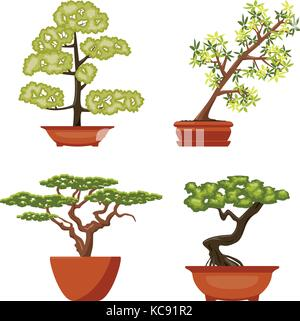 vector set of colorful bonsai trees in pots, isolated on white background. chinese bonsai art symbols - Stock Photo