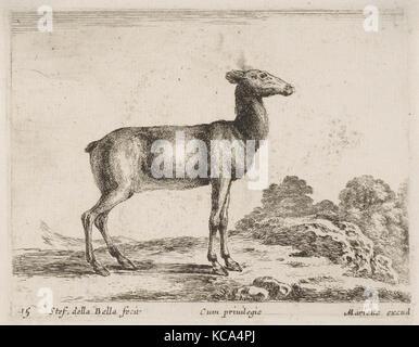 Plate 15: doe, from 'Various animals' (Diversi animali), Stefano della Bella, ca. 1641 - Stock Photo