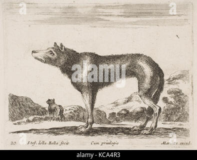 Plate 20: wolf, from 'Various animals' (Diversi animali), Stefano della Bella, ca. 1641 - Stock Photo