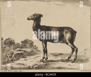 Plate 15: doe, from 'Various animals' (Diversi animali), After Stefano della Bella, after 1641 - Stock Photo