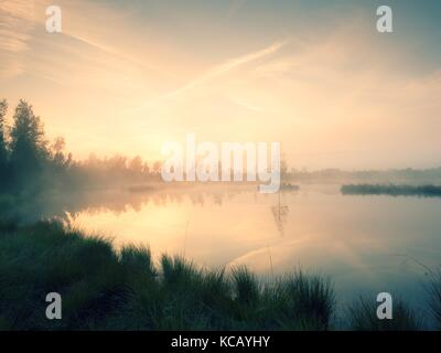 The  island in middle of lake. Purple morning with peaceful water level in mysterious forest. Fresh green color - Stock Photo