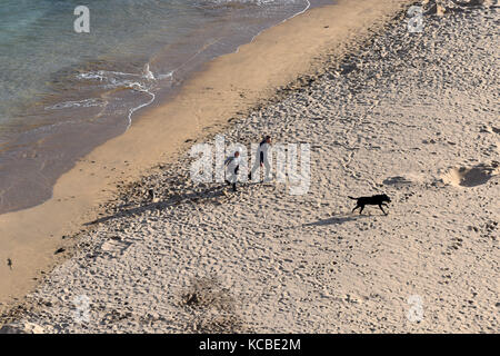 Couple with dog on beach at Barafundle Bay in Pembrokeshire, West Wales, Uk - Stock Photo