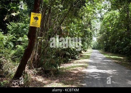 Recent Cassowary Crossing: temporary roadside sign. September 2017. Cow Bay. Queensland. Australia. - Stock Photo