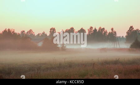 Panoramic view of misty forest,retro, vintage style look. Panorama of autumn landscape, fog in the forest at sunset - Stock Photo