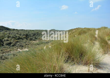 Scenery behind the sandy dunes on the North Sea coast in the Netherlands on the island Schouwen-Duiveland - Stock Photo
