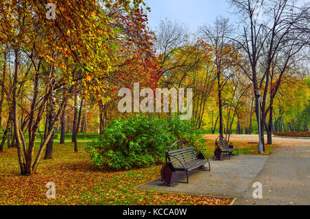 Cozy Corner of autumn park with the bench under rowan tree branches with bunches of red berries. - Stock Photo