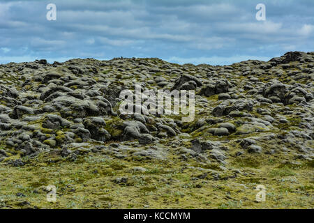 Mossy lava stone field in Iceland on a summer day - Stock Photo