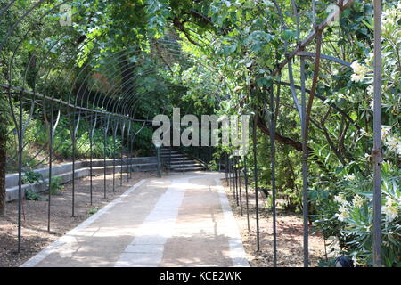 Real Jardin Botanical Garden - Stock Photo