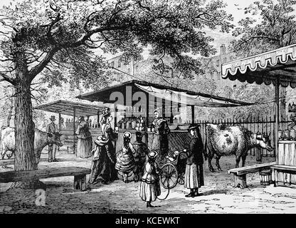 Engraving depicting milk vendors in Spring Gardens, St James's Park, London. Dated 19th Century - Stock Photo