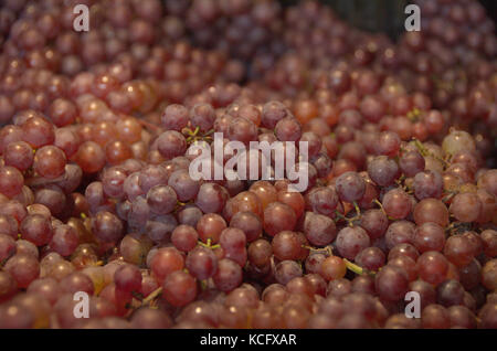 Grapes Cluster Bunch Red Bulk Table Wine Farmers Market Organic Fersh Fruits Vegetables - Stock Photo