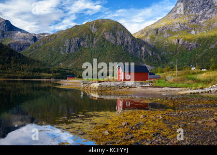 Traditional red rorbu cottages at the sea on Lofoten islands in Norway - Stock Photo