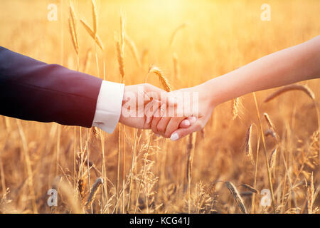 Wedding couple holding hands over ears of corn - Stock Photo