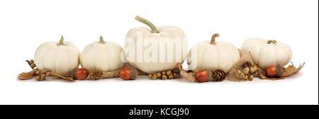 Autumn border arrangement of white pumpkins and brown leaves isolated on a white background - Stock Photo