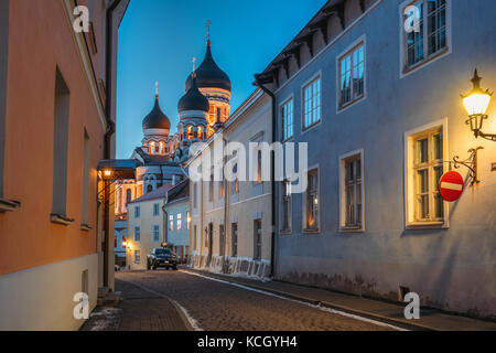 Tallinn, Estonia. Evening Or Night View Of Alexander Nevsky Cathedral From Piiskopi Street. Orthodox Cathedral Is - Stock Photo