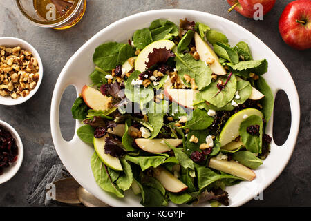 Fall salad with spring mix, apple and cranberry - Stock Photo