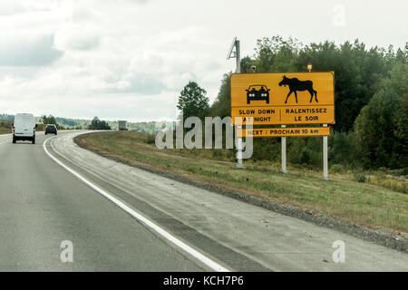 Yellow diamond traffic road sign warning Attention moose crossing, posted alongside trans canada road in quebec - Stock Photo
