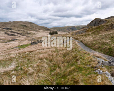 Track along the valley of the Afon Hyddgen below the mountain of Pumlumon (Plynlimon) in the Cambrian Mountains, - Stock Photo