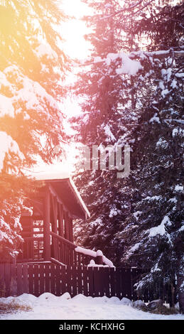 Cottage amidst snow covered trees in forest - Stock Photo