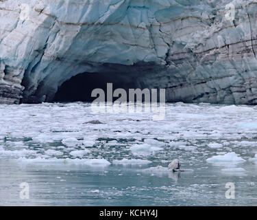 Deep melt water cave on Margerie glacier in Glacier Bay National Park and Preserve, Alaska - Stock Photo