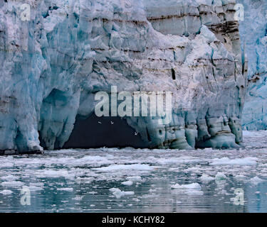 Seagulls flying into a melt water cavern on Margerie Glacier in Glacier Bay National Park and Preserve, Alaska - Stock Photo