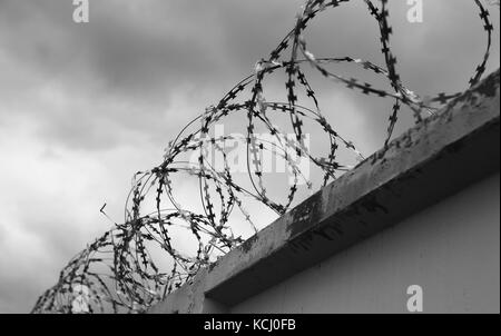 Concrete wall with barbed wire on fence - Stock Photo