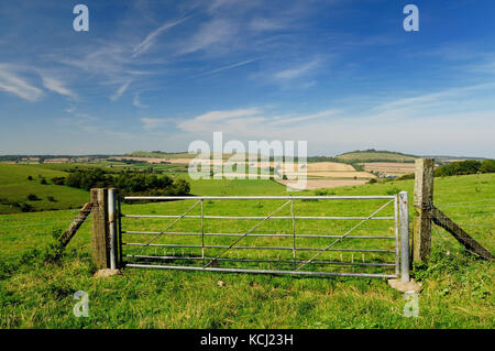 A field gate in the Wiltshire countryside, looking towards Little Knoll and Long Knoll. - Stock Photo