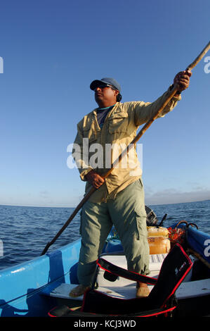 Fishermen fly fishing and casting for juvenile tarpon in the remote creeks of Campeche Yucatan Mexico - Stock Photo