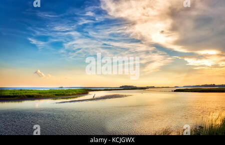 Great Blue Heron standing on a small island watching a beautiful Chesapeake Bay sunset in Maryland - Stock Photo