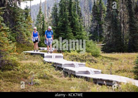 A senior couple walks along a series of boardwalks, built for day hikers exploring Paradise Meadows near Mt. Washington. - Stock Photo