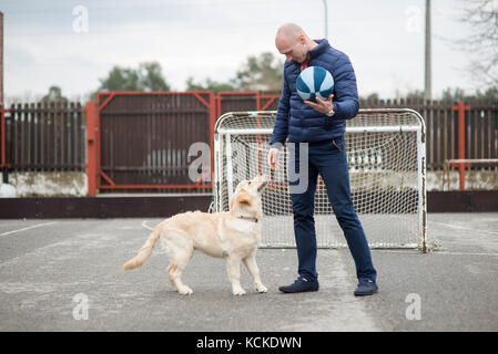 Golden Retriever dog and man - Stock Photo