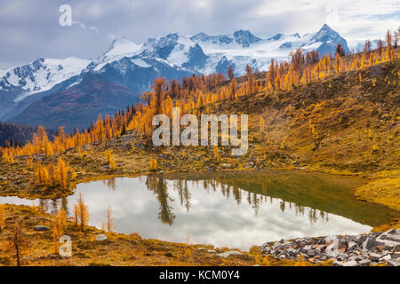 Mount Macbeth above a tarn and fall larches in Monica Meadows, Purcell Mountains, British Columbia, Canada. - Stock Photo