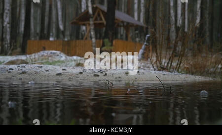 Old wooden dock covered by first snow on a dull and gray but calm day. Pier at the lake, forest lake shore rain - Stock Photo