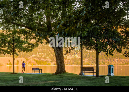 Woman jogging in City Park, Kelowna, Okanagan Region, British Columbia, Canada. - Stock Photo