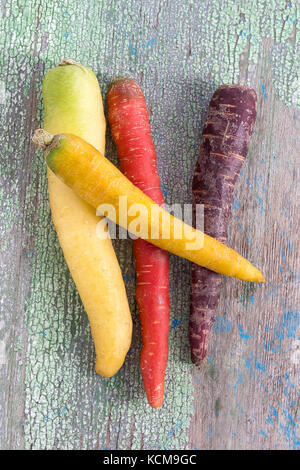 composition with heritage carrot varieties against a rustic green wooden background - Stock Photo