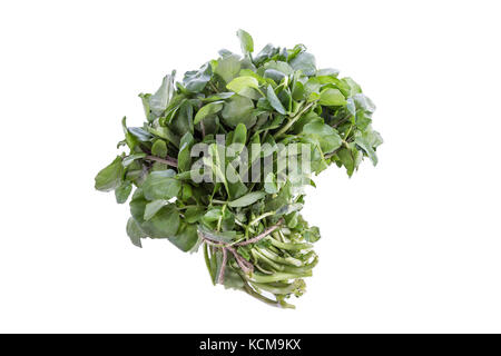 bunch of fresh watercress on white background