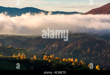 thick fog over the hill in autumn mountains. gorgeous nature scenery at sunrise - Stock Photo
