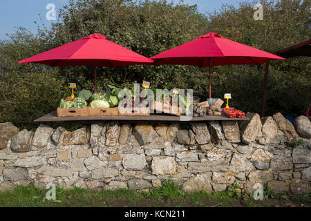 A fruit and veg stall beneath red umbrellas is on a dry stone wall on the Holy Island of Lindisfarne, on 27th September - Stock Photo